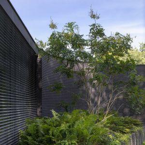 Dom miał w założeniu zapewniać mieszkańcom bliskość z naturą. Zdjęcia: i29/Ewout Huibers