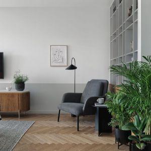 Rośliny to sprawdzony pomysł na dekorację salonu. Projekt: Raca Architekci. Fot. Tom Kurek