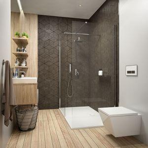 Prysznic walk in z niskim prysznicem  - rozwiązanie do nowoczesnej łazienki. Fot. Sanplast