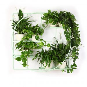 Kwietnik ścienny M_OD_BUJNIE - pomysł na mini zieloną ścianę w salonie. Fot. Bujnie