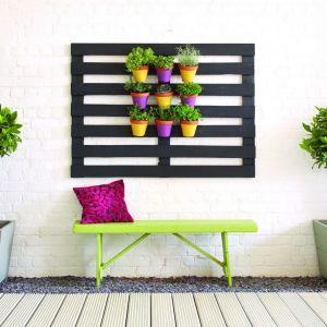 Pomysł na małą i bardzo prostą zieloną ścianę wykonaną z palety. Fot. Altax Viva Garden