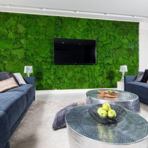Salon z mchem chrobotkiem na ścianie za telewizorem. Projekt Dariusz Grabowski. Fot. Bartosz Jarosz