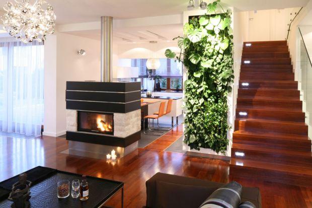 Ogród wertykalny w salonie. Jak założyć zieloną ścianę? Ceny, montaż, fajne pomysły
