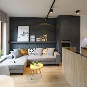 Ściana za kanapą w salonie wykończona jest cegłą w szarym kolorze. Projekt: Ola Kołodziej, Ula Szmyt. Fot. Bartosz Jarosz