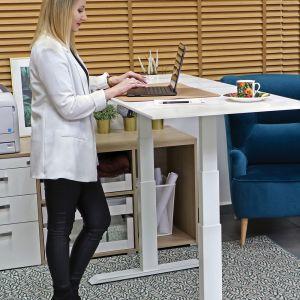 Elektryczny stelaż umożliwia regulację wysokości biurka. Fot. Rejs
