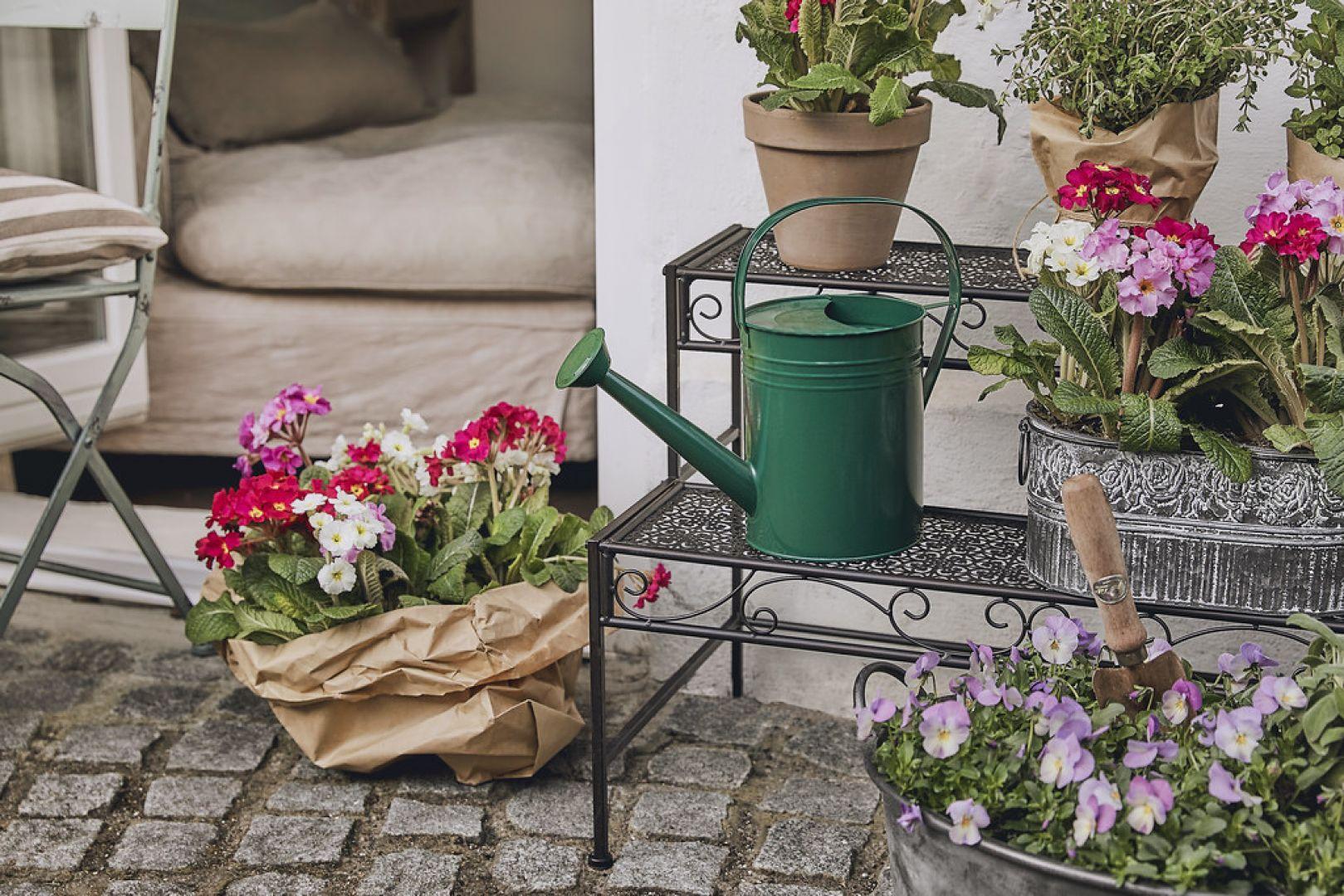 Wyposaż swój ogród w donice, stojaki i inne produkty do wyeksponowania roślin. Fot. WestwingNow