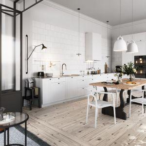 Kuchnia bez górnych szafek połączona z salonem i jadalnią wygląda szykownie i bardziej salonowo. Fot. Ferro