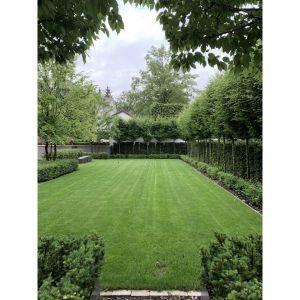 Ogród zapewnia ciszą i spokój w mieście. Projekt i zdjęcia: Aga Kobus i Grzegorz Goworek, pracownia Studio Organic