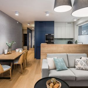24-metrowy salon połączony z aneksem kuchennym. Chłodne kolory z jasnym pięknym drewnem. Projekt InDe Projekt. Fot. Bartek Bieliński.jpg