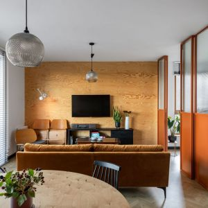 Ściana za telewizorem w salonie wykończona jest drewnianą sklejką. Projekt: Barbara Klimek, Pracownia Barak. Fot. Jakub Nanowski, Perspektywa