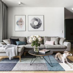 Jasny salon w nieco skandynawskim stylu i szary narożnik.  Projekt: Raca Architekci. Fot. Fotomohito