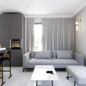 Nowoczesny jasny salon z szarą sofą. Projekt i wizualizacje: Monika Stanie