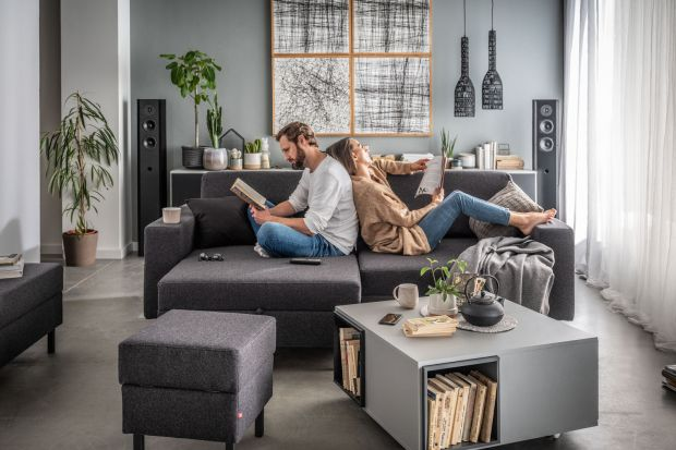 Sofa w salonie: 15 pomysłów do małego mieszkania. Zobacz zdjęcia!