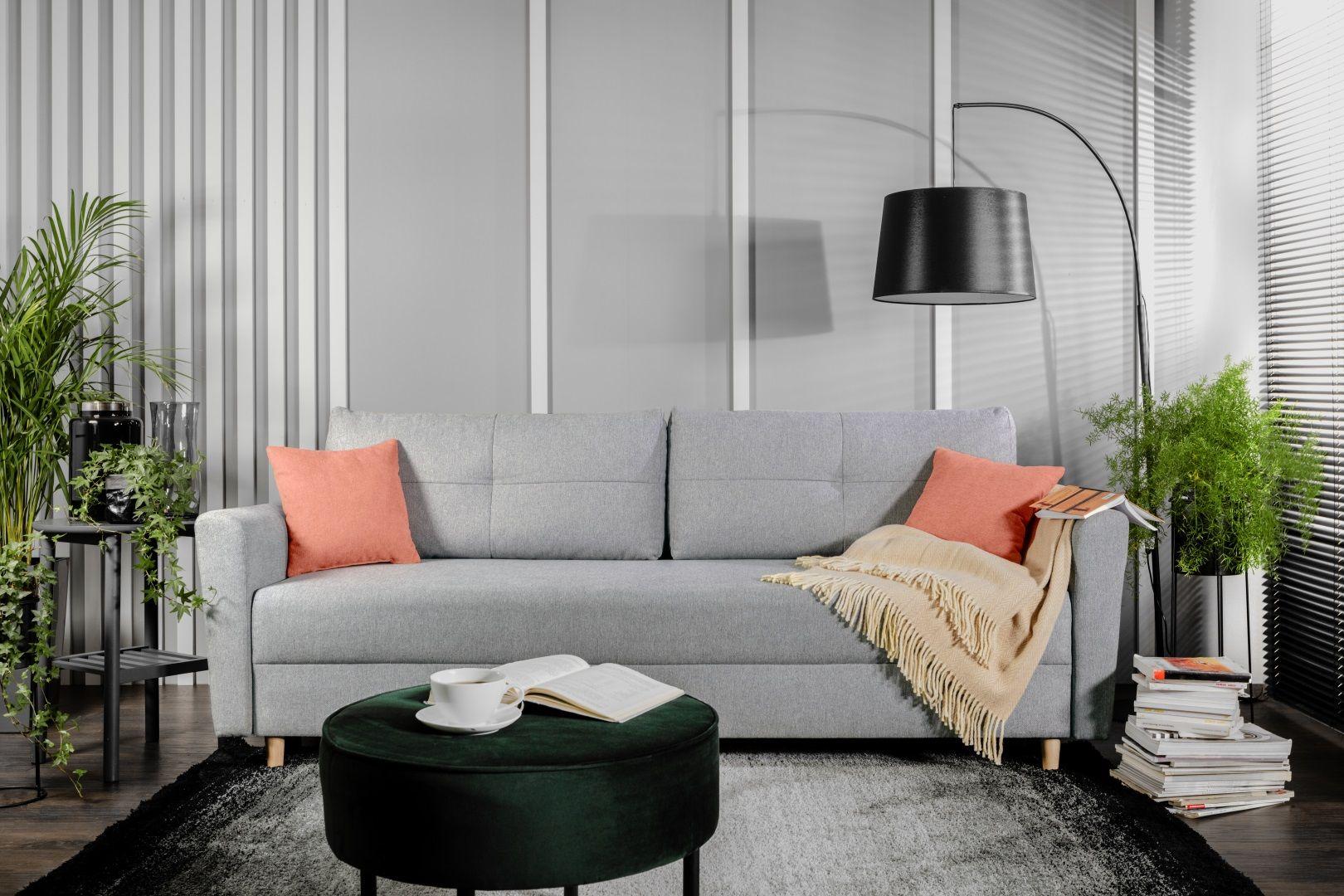 Sofa do małego salonu w szarym kolorze z kolekcji Aradena. Dostępne w ofercie Black Red White. Fot. Black Red White