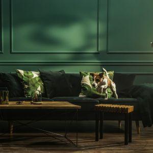 Modny odcień butelkowej zieleni Secret Garden z kolekcji farb Beckers Designer Collection podkreśli elegancki charakter wnętrza. Fot. Beckers.