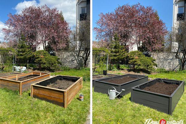 Budujemy ogródek warzywny krok po kroku