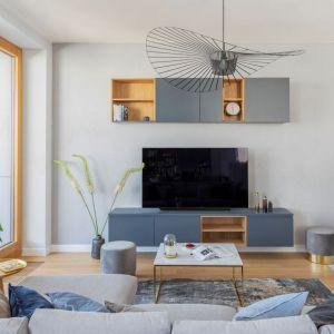 Szafka pod telewizor w salonie w szarym kolorze z elementami drewna. Projekt: Renee's Interior Design. Fot. Marta Behling, Pion Poziom - Fotografia Wnętrz