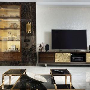 Szafka pod telewizor w salonie zaprojektowana na zamówienie. Projekt: Tomasz Czajkowski x Dekorian Home. Fot. Monika Woroniecka