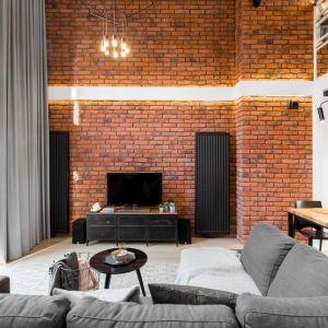 Ściana za telewizorem w salonie wykończona jest ręcznie wykonaną cegłą w kolorze czerwonym. Ściana świetnie pasuje do szarości i do drewna. Projekt i zdjęcia: Monika Staniec