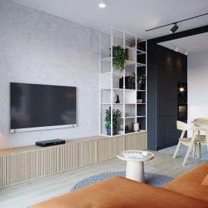 60-metrowee mieszkanie w Poznaniu. Projekt: architekt Sebastian Marach, YONO Architecture, MAST. studio - Maria Trojnara, Joanna Stawiak