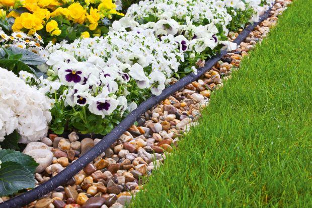 Masz ogród kwiatowy albo warzywnik? Tracisz sporo czasu na codzienne podlewanie? A myślałeś o montażu automatycznego nawadniania kroplującego? Podpowiadamy, od czego zacząć!