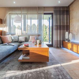 Stonowany szary dywan w salonie. Projekt: Agnieszka Morawiec. Fot. Pion Poziom