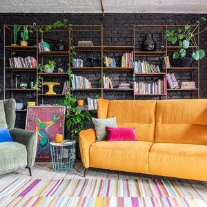 Kolorowa sofa i szary fotel do salonu z kolekcji Lorien. Fot. Gala Collezione
