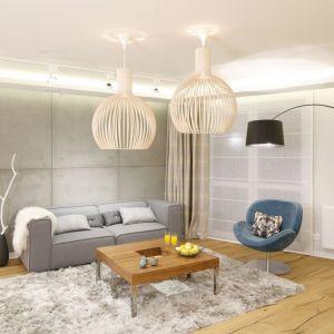 Ściana za kanapa w salonie wykończona jest betonowymi płytami. Projekt: Agnieszka Hajdas-Obajtek. Fot. Bartosz Jarosz