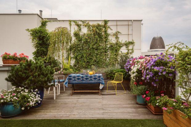 Na co warto zwrócić uwagę urządzając taras i balkon? O czym pamiętać w sezonie letnim? Podpowiadamy!