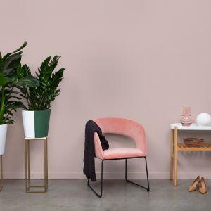 Wystarczy ściany pomalować farbą Beckers Designer Colour w kolorze Powder Pink oraz dokomponować delikatne krzesło w odcieniu ciepłego różu i pokaźnych rozmiarów kwiaty doniczkowe, które będą stanowić ważny kontrast kolorystyczny aranżacji. Fot. Beckers
