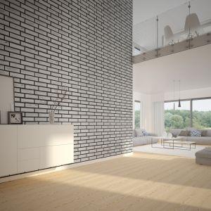 Płytki nebraska na ścianie w salonie w stylu loft. Fot. Elabrick