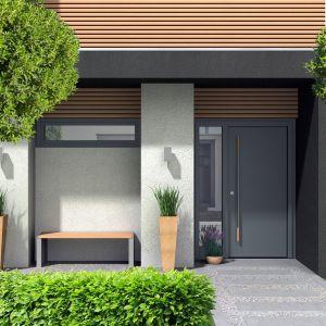 Drzwi zewnętrzne Reveal model Smooth