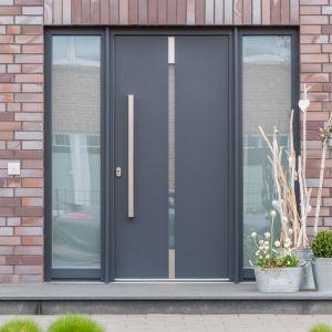 Drzwi zewnętrzne Reveal model Lithe