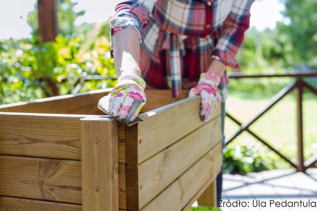 Znana ekspertka od spraw domowych, Ula Pedantula, rozpoczęła cykl poradnikowy nt. zmian dekoracyjnych i renowacji w przydomowej przestrzeni, do których zdecydowała się wykorzystać produkty do drewna.