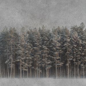 Tapeta Instabilelab black forest