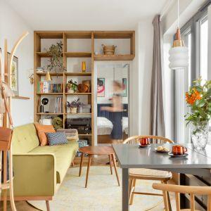 Mały salon w mieszkaniu o powierzchni 30 m2 i proporcjach przypominające tramwaj, 2,4 x12 m. Projekt: Patrycja Morawska. Fot. Anna Laskowska/Dekorialove