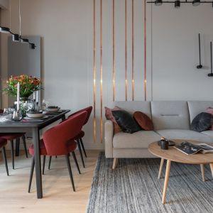 Elegancki, mały salon. Projekt i zdjęcia: KODO Projekty i Realizacje Wnętrz