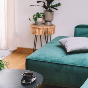 W mieszkaniu nie brakuje naturalnych roślin. Projekt: Make Architekci. Zdjęcia: Hanna Połczyńska, Kroniki Studio