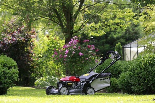 Tegoroczne lato natomiast zaoferowało nam prawdziwie tropikalne warunki z palącymi promieniami słońca oraz obfitymi i częstymi opadami deszczu. Jak pielęgnować trawnik w takich warunkach? Przeczytajcie poradnik!