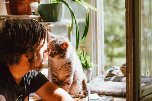 Zwierzęta w domu. Nieocenieni towarzysze izolacji