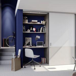 Szafa z miejscem do pracy - pomysł na garderobę i gabinet w jednym. Fot. Raumplus