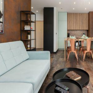 W mieszkaniu kolor miętowy łączy się z drewnem i kolorami metali. Projekt wnętrza: Aneta Subda. Zdjęcia:  STOLZ Photography Team dla Renters.pl. Współpraca: Dekorian Home