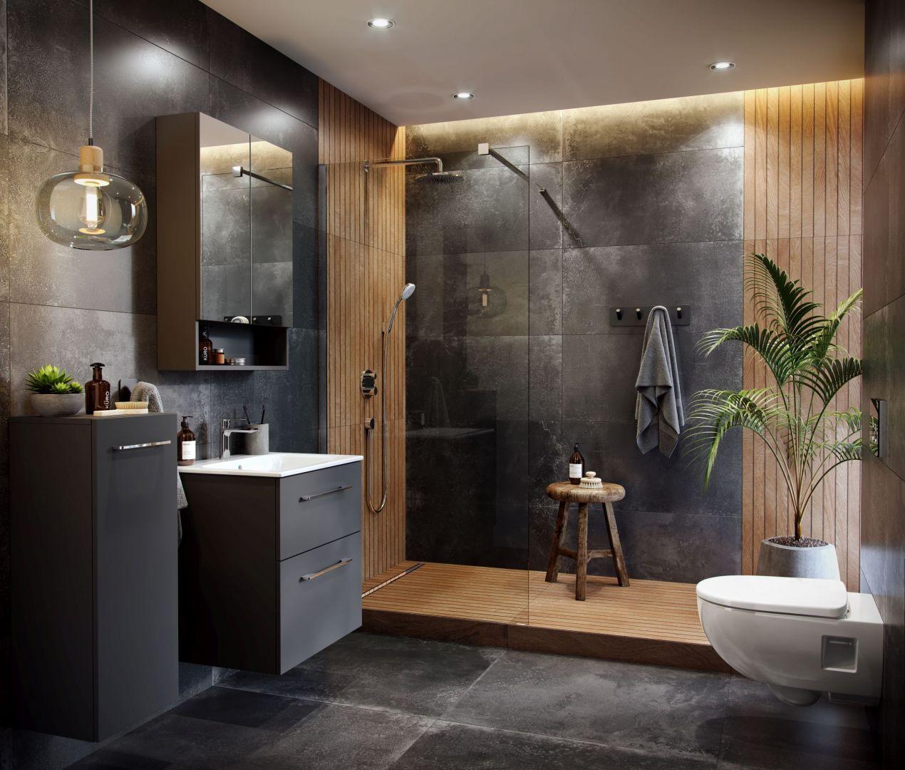 Łazienka dla rodziny urządzony w ciemnym kolorach. Fot. Koło