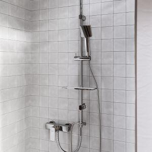 Jasna łazienka z dodatkiem naturalnych kolorów i materiałów. Na zdjęciu: zestaw natryskowy Amigo VerdeLine. Fot. Ferro