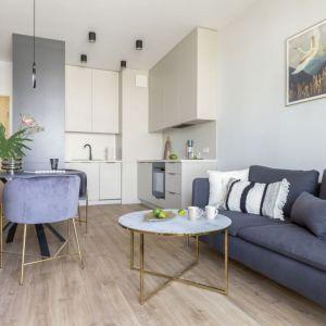 Pomysł na bardzo małą kuchnię w salonie? Jasne kolory frontów i prosty, minimalistyczny wygląd. Projekt wnętrza architekt wnętrz Olga Nowosad-Szewców, Decoroom. Fot. Pion Poziom