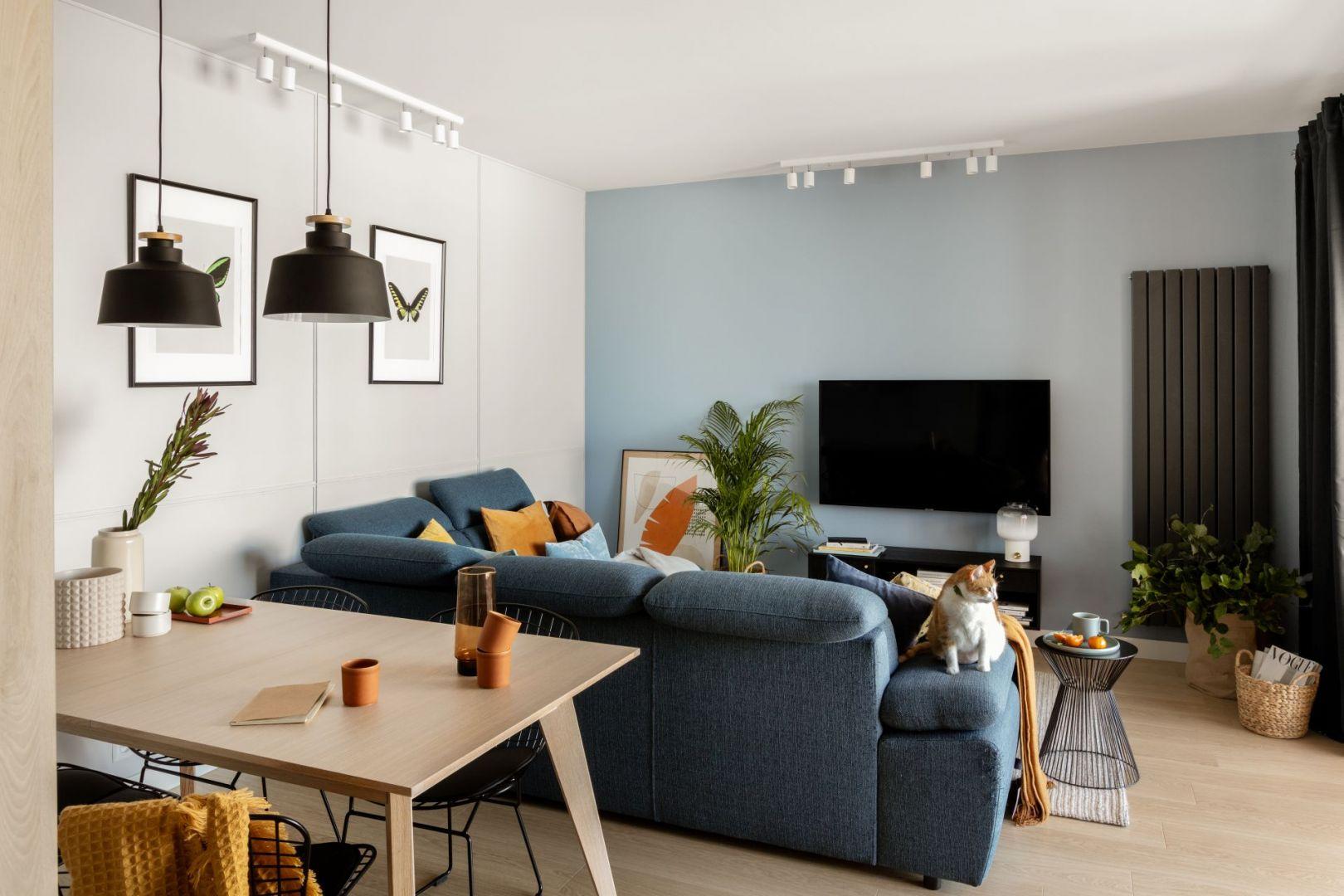 Ścianę z telewizorem pomalowano na pastelowy niebieski kolor. Projekt: Framuga Studio. Zdjęcia: Aleksandra Dermont