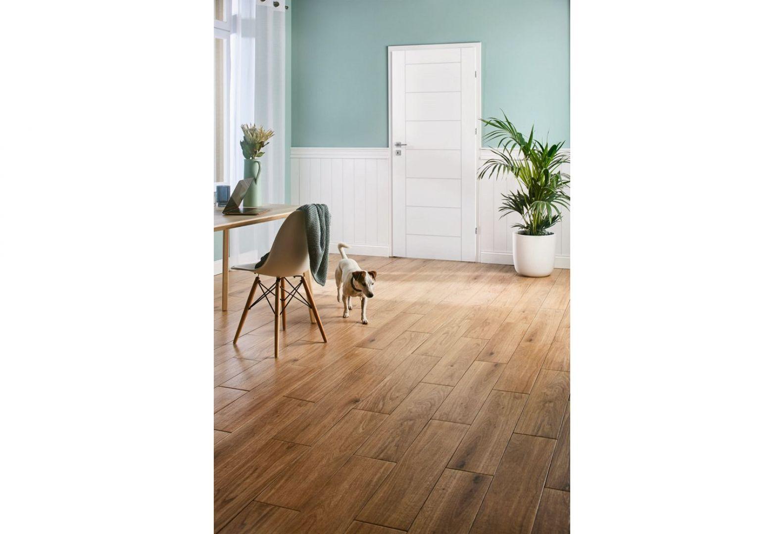 Drzwi pełne z kolekcji Exmoor Sette w kolorze białym. Dostępne w sklepie Castorama. Cena: 268 zł. Fot. Castorama
