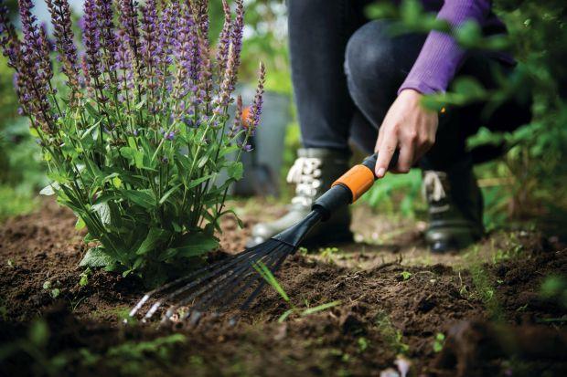 Pora na jesienne porządki w ogrodzie. Przed nami sprzątanie liści z trawnika i grządek, czyszczenie posadzek czy rynien w altanach. Ogrodowe prace z pewnością ułatwi odpowiedni sprzęt.