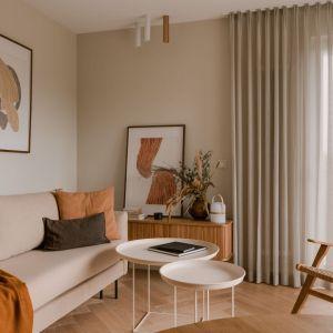 Delikatny, prosty fotel w małym salonie. Projekt: Magdalena Gajda. Fot. ONI Studio