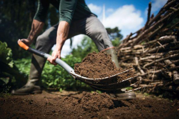 Październik to idealny czas na sadzenie róż w ogrodzie. Przyda ci się kilka podstawowych narzędzi, jak sekator, szpadel i widły.